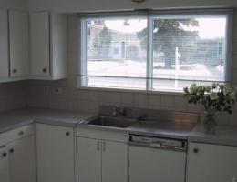 The_original_sink_+_dishwasher_unit