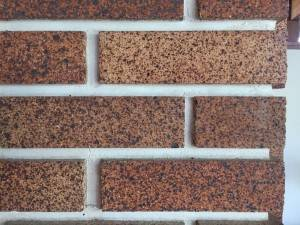 Detail of the Claybank brick used in the Calgary Trend House