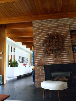 Fireplace in the Trend House